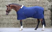 Kentucky Stable Rug talliloimi 400g