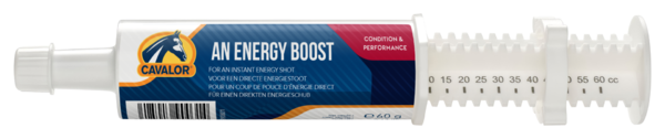 Cavalor Energy Booster Tube 60ml